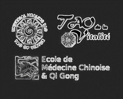 Logos-TAO-Ecole-Medecine-Chinoise-et-Qi-Gong_black